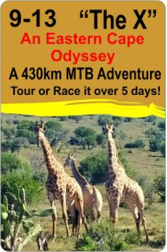 An Eastern Cape Odyssey