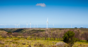 The wind turbines will be part of the majestic views the riders would experience during he JBay MTB Open