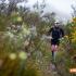 Dom Wills on his way to winning the Marloth Mountain Challenge. Image by Nick Muzik