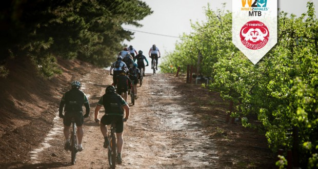 Riders in action during the 2013 FNB Wines2Whales MTB Events.  Photo Credit:  Cherie Vale / NEWSPORT MEDIA