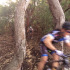 Riders flying through the new single track section of the Woodland s MTB Cycle Challenge - Phot Dawie Blaauw