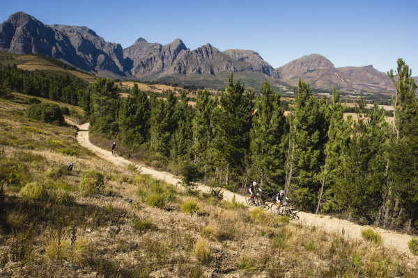 Riders during stage 2 of the 2015 Liberty Cape Winelands MTB encounter from Le Franshoek Hotel in Franshoek to Doolhof Wine Estate in Wellington.