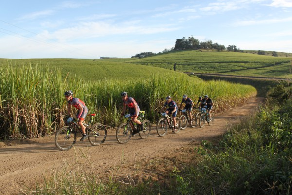 Eventual winners of the 2015 Old Mutual joBerg2c, from left, Gawie Combrinck and Johann Rabie (EAI Cycling) lead Hanco Kachelhoffer and Pieter Seyffert (Altech Autopage Karan Beef), and Justin Tuck and David George (The Gear Change) through the sugar cane fields en route to Scottburgh. Combrinck and Rabie won the nine-day mountain bike race on Saturday. Photo: Full Stop Communications