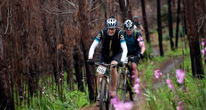 Seen here:  Mountain bikers in action during the 2014 FNB Wines2Whales MTB Events.  Photo Credit:  Cherie Vale / NEWSPORT MEDIA