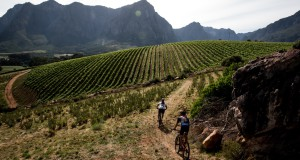 The third annual Pennypinchers Origin Of Trails returns to Stellenbosch this coming Friday, 27 and Saturday, 28 November 2015.  Seen here:  Riders in action at the 2014 Pennypinchers Origin Of Trails.  Photo Credit:  Cherie Vale / NEWSPORT MEDIA