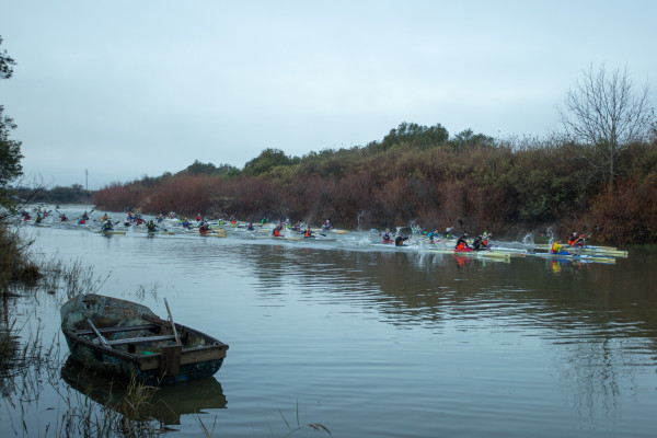 The Berg River Canoe Marathon from 13 to 16 July takes the paddlers from Paarl, through the Winelands into the Swartland and down to the Cape West Coast. John Hishin/ Gameplan Media