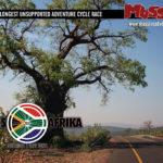 trans-afrika-2016-photos-and-logos-2