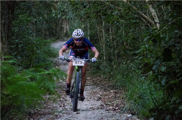 Riders can expect exhilarating forest singletracks, including new sections build specifically for the Knysna Bull by the Knysna Sport School. Photo by Julie Ann Hoffman.