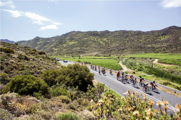The Cape Classic 380 route takes in some of the Western Cape's most beautiful roads. Photo by Nick Muzik.