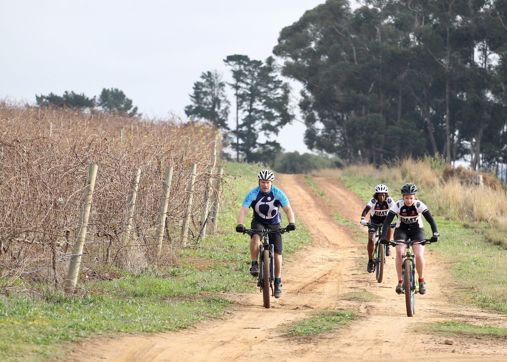 "Becks Blue has entered the mountain biking realm by teaming up with two of the Western Cape's prominent mountain bike races, the Fedhealth MTB Challenge (16 and 17 September 2017) and the BUCO Origin Of Trails (25 and 26 November 2017).  ""Becks Blue is a non-alcoholic beer that delivers on full beer taste,"" says Vilosha Soni, Marketing Manager of Beck's Blue.  ""It's ideal for those consumers that are looking to live life to the fullest without compromise. We would like all entrants to celebrate their achievements by enjoying an ice cold Beck's Blue with their friends after the race."" Seen here:  Mountain bikers enjoying the routes on offer at the picturesque Boschendal Wine Estate in the build up to the Fedhealth MTB Challenge (16 and 17 September 2017).  Photo Credit:  Luke Walker"