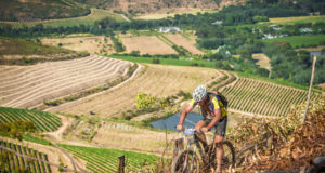 """Taking place on Saturday, 25 November 2017 and Sunday, 26 November 2017 South Africa's """"mountain bike party of the year"""", the BUCO Origin Of Trails has welcomed  both a new start and finish venue in 2017. """"With the BUCO Origin Of Trails highlighting the brilliance of Stellenbosch, we are excited to announce that both stages of the 2017 event will start and finish at the Coetzenburg Soccer Field (Stellenbosch),"""" says Michael Meyer, Managing Director of Stillwater Sports.  """"Each year we strive to build on the success of the previous year's event.  With the new venue being in the center of Stellenbosch riders will be able to experience the city's true radiance from start to finish."""" Seen here:  Mountain bikers enjoying the brilliance of the City Of Oaks at the 2016 BUCO Origin Of Trails.  Photo Credit:  Tobias Ginsberg"""