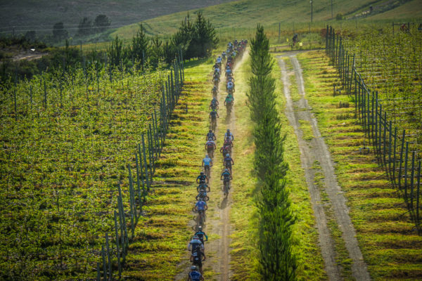 Mountain bikers in action during Stage Three of the FNB Wines2Whales MTB Adventure.  Photo Credit:  Tobias Ginsberg