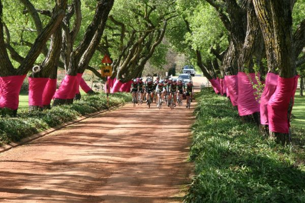 Charity organisation Pink Trees for Pauline, who raise funds to assist cancer patients, will be involved with the Bestmed Tour of Good Hope for the first time in March next year. Photo: Supplied