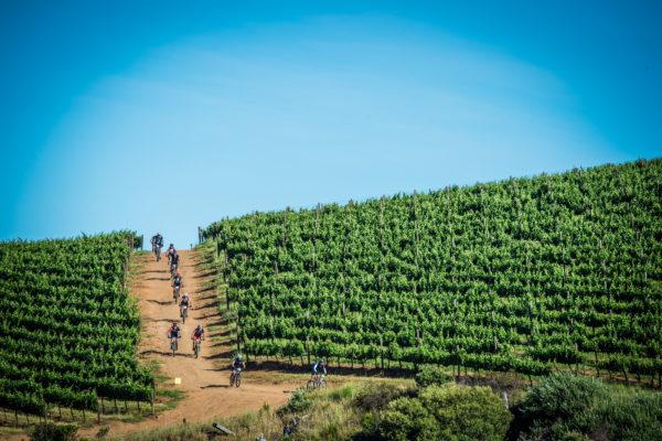 Mountain Biking enthusiasts enjoying the 2017 Origin Of Trails routes.  Photo Credit:  Tobias Ginsberg