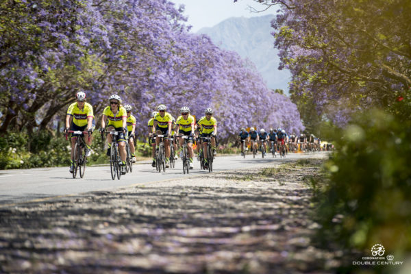 The 2018 Coronation Double Century is just over two months away. We have put together some advice and tips for endurance nutrition for all those training for the 202km road race.