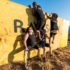 Fedhealth IMPI Warriors working together to overcome one of the IMPI Challenge's most iconic obstacles, the Rawson Wall.  Photo Credit:  Anthony Grote