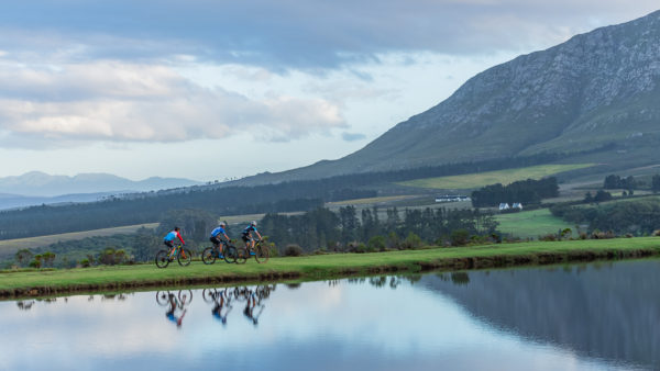 The Blue Mountain Xtreme is a thrilling trail race that is taking place in Hermanus.