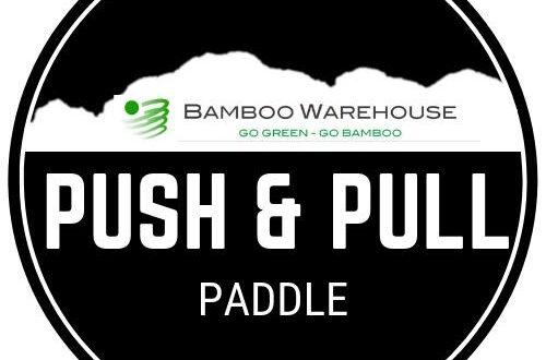 PushAndePullPaddleLogo2019
