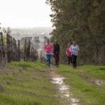 the-steenberg-spring-trail-run-2-lr