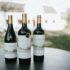 Blaauwklippen Wine Estate wine